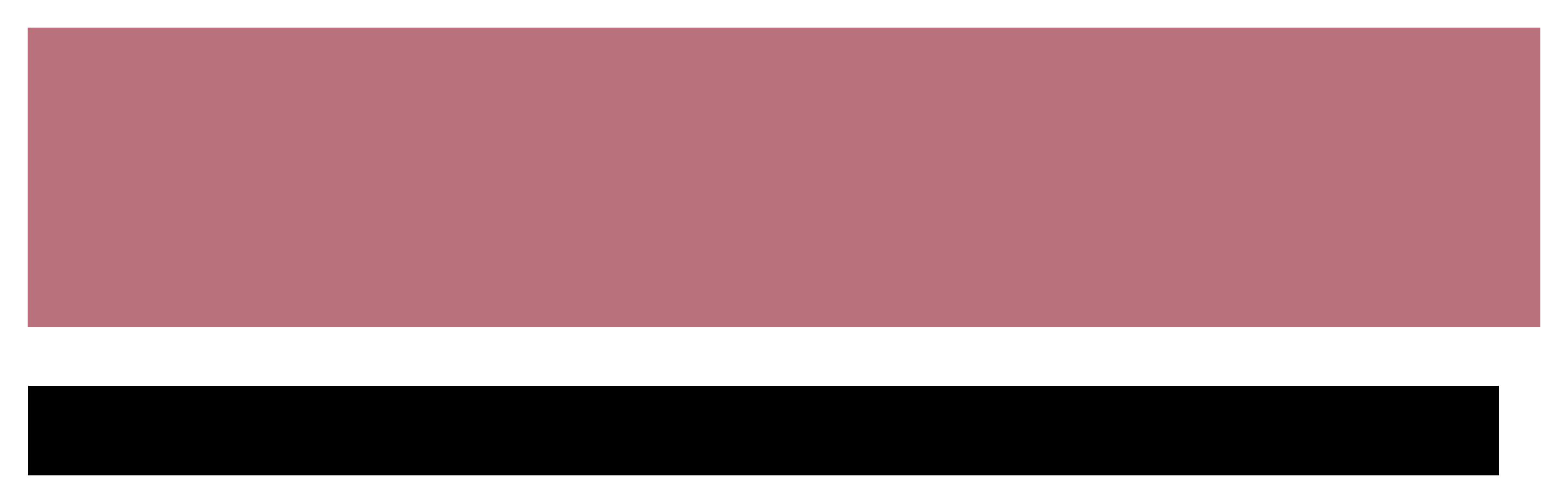 blankanvas-logo